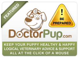 Ask vet Doctorpup.com